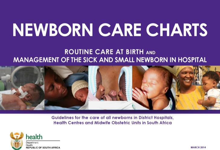 Newborn Care Chart Template