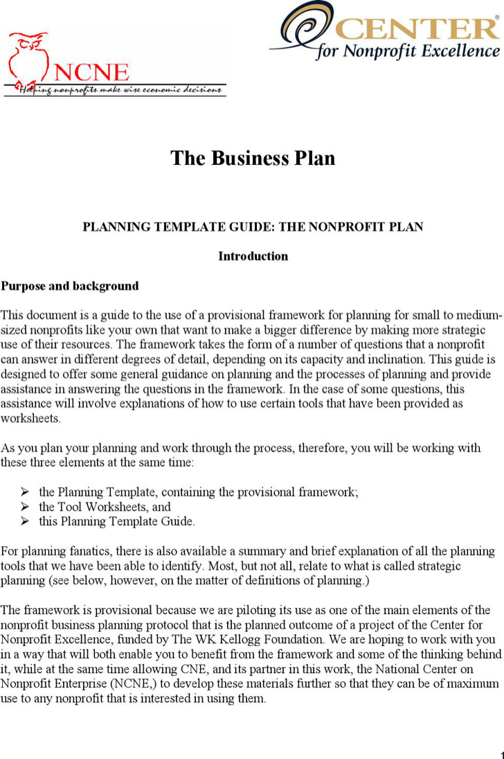 20 non profit business plan template free download nonprofit business planning template guide template pdf download flashek