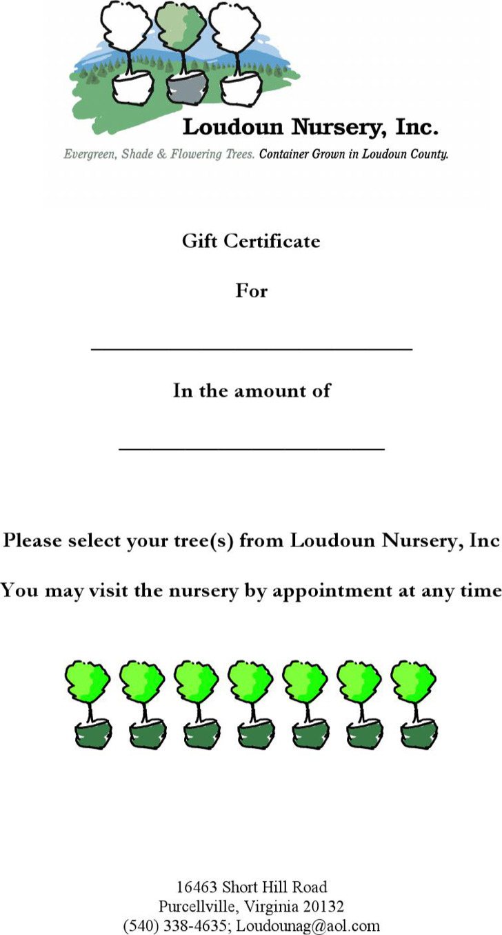 Nursery Gift Certificate Template In Word Download Free Premium
