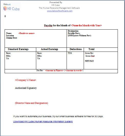 Organisation Paystub Salary Template Free Download