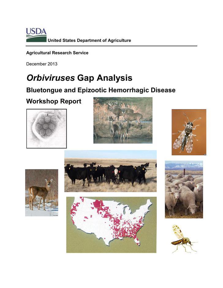 PDF Format Orbiviruses Gap Analysis Template Free Download