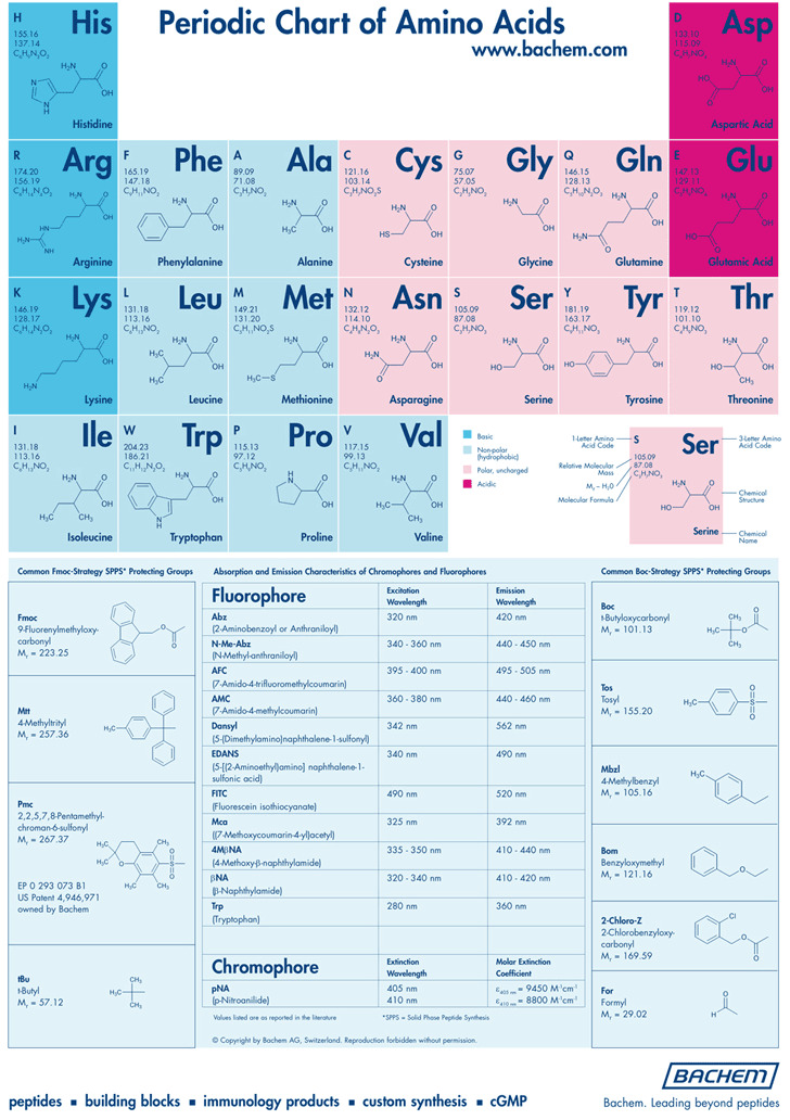 Periodic Chart of Amino Acids