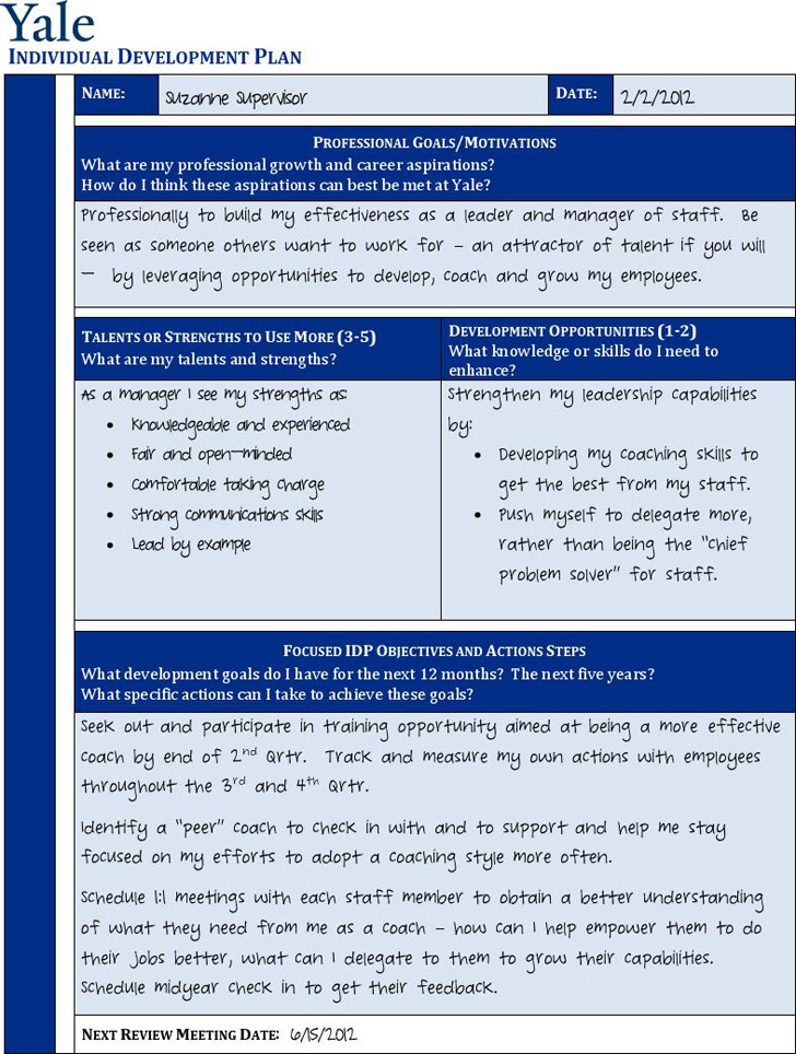 Personal Development Plan Sample 2