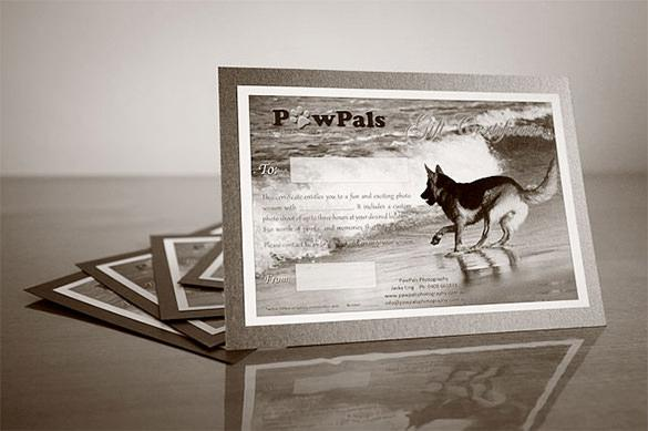 Download Pet Photography Gift Certificate Template For Free