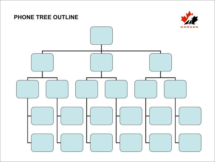 Phone Tree Outline Template PDF