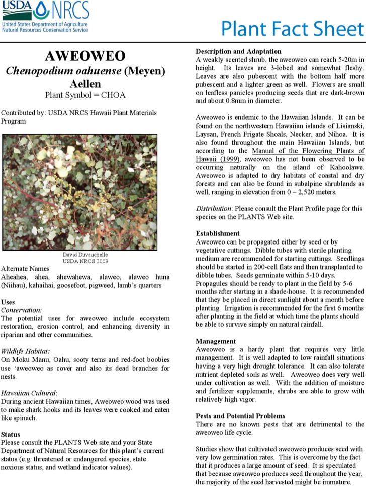 Plant Fact Sheet Template Pdf Printable Download