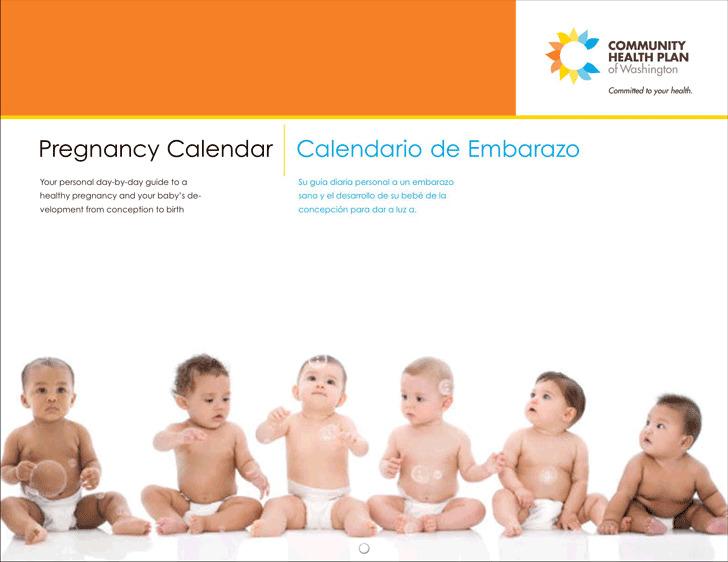 Pregnancy Calendar 2