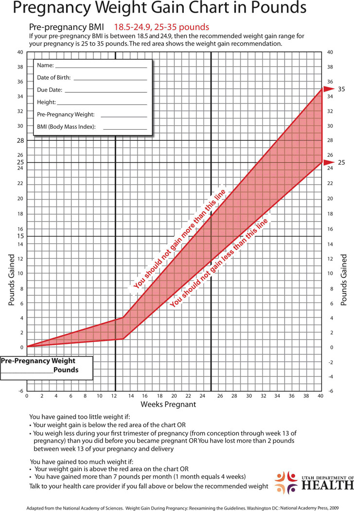 Pregnancy Weight Gain Chart in Pounds