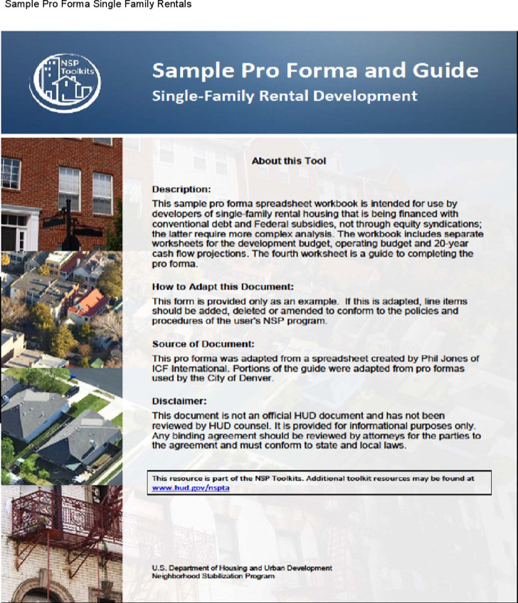 Pro Forma Family Cash Flow Template