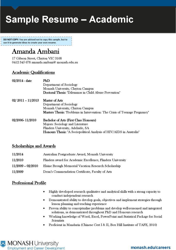 Professional Academic Resume