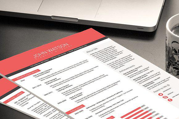 Professional Portfolio Resume Format Template Download