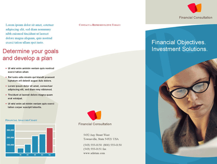 Professional Services Marketing Brochure (Tri-Fold)