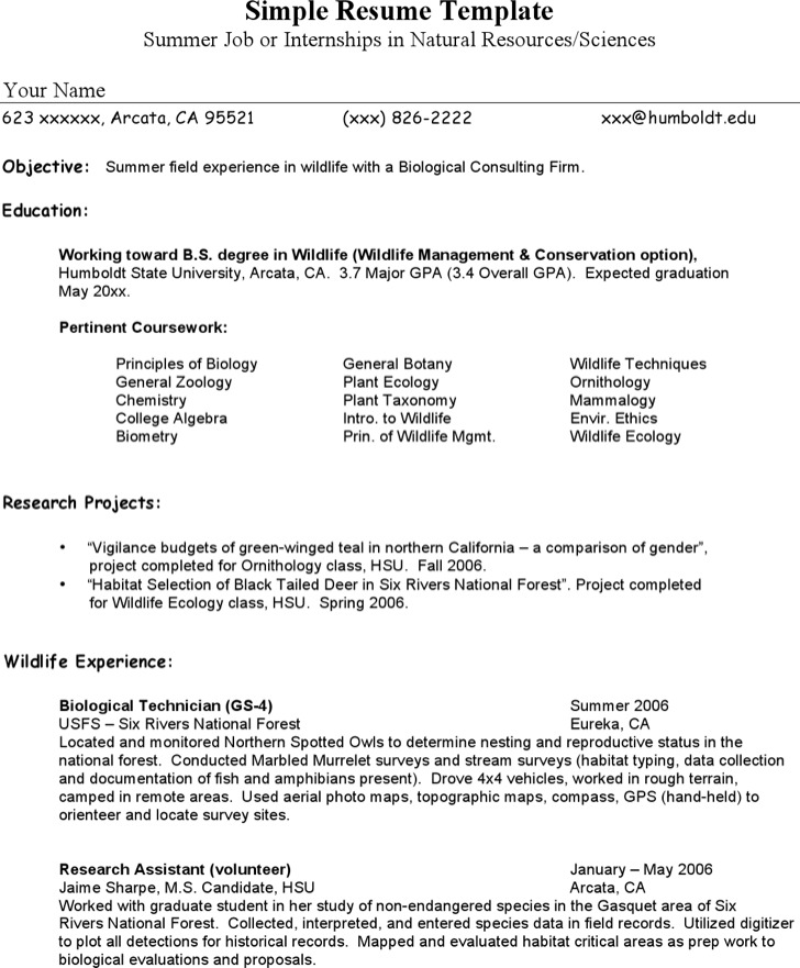 Resume Example Intern Summer1