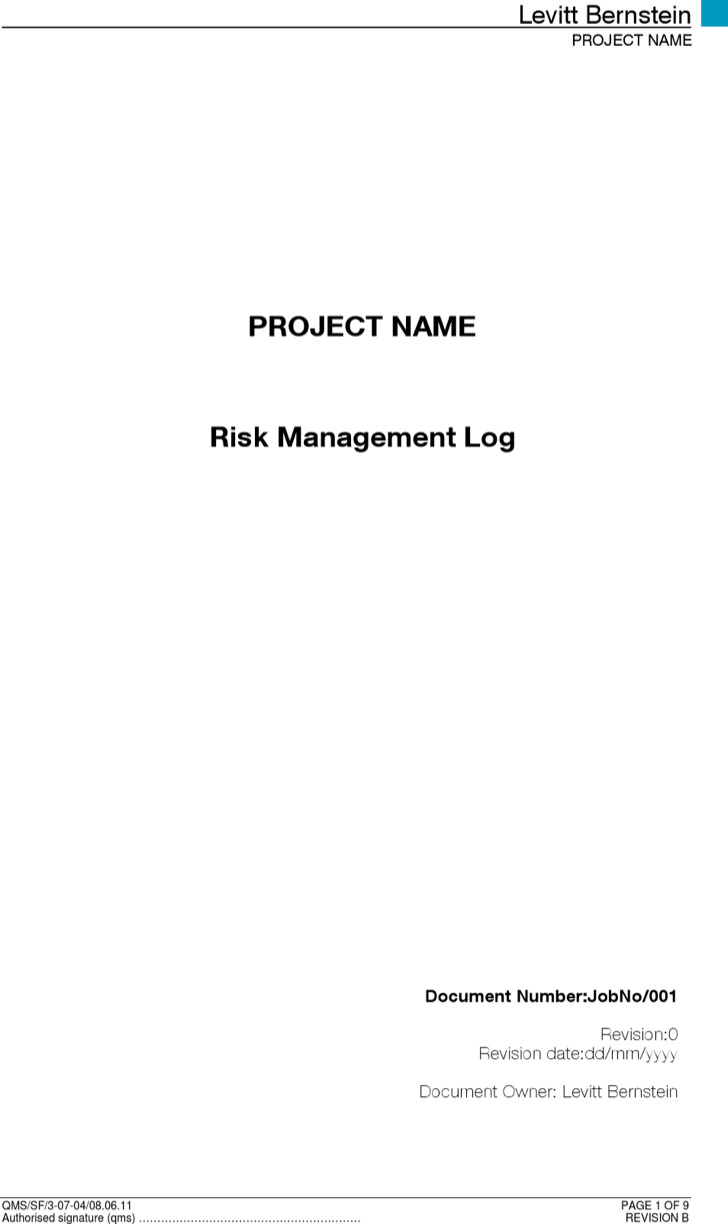 Risk Management Log Template