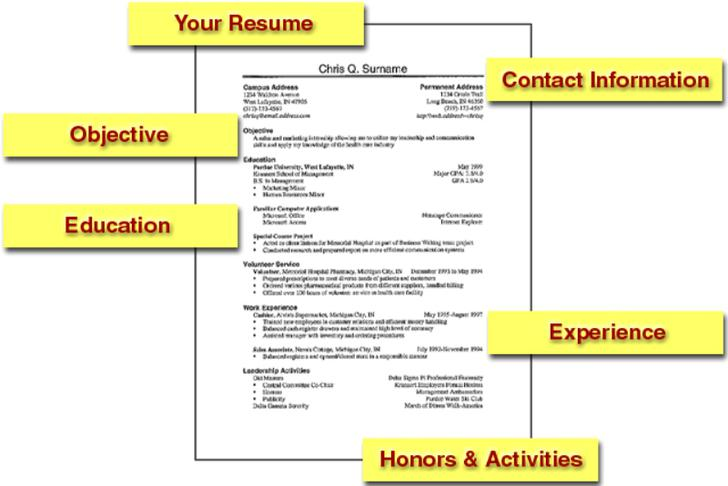 Sample Basic Resume Template