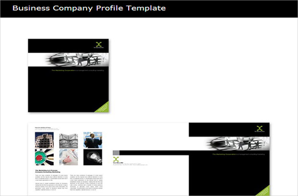 Sample Business Company Profile Template