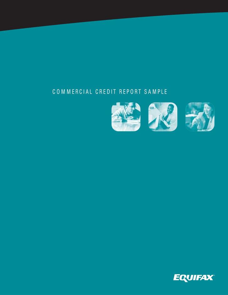 Sample Credit Report 3