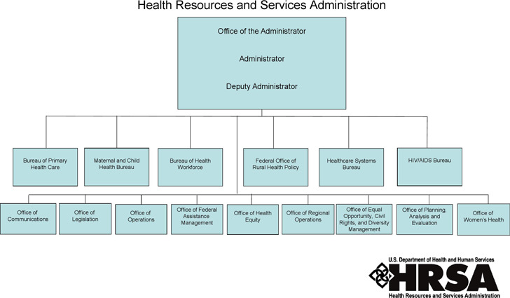 Sample Organizational Structure