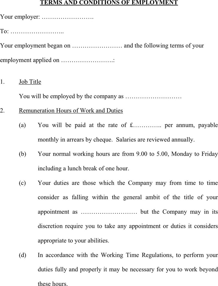 Terms And Conditions of Employment Template