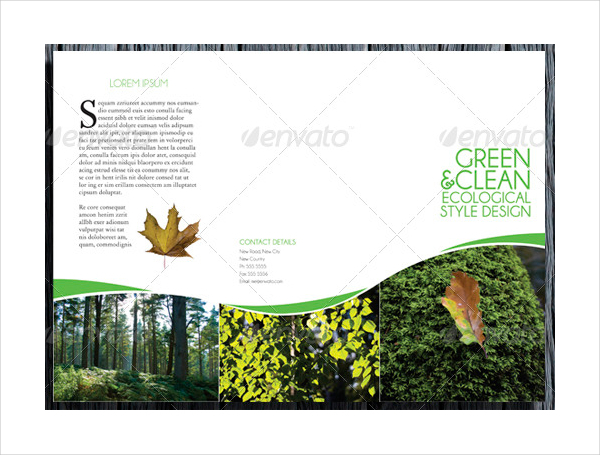 Tri Fold Environmental Style Brochure