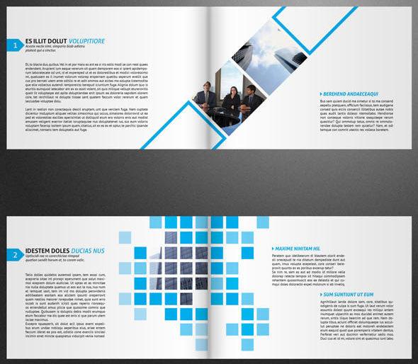 VidiQue Professional Brochure Template